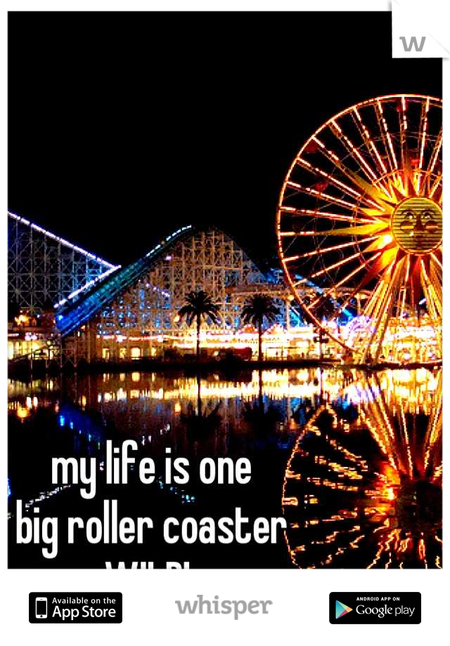 my life is one big roller coaster WILD!