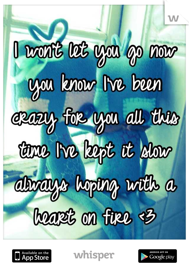 I won't let you go now you know I've been  crazy for you all this time I've kept it slow always hoping with a heart on fire <3
