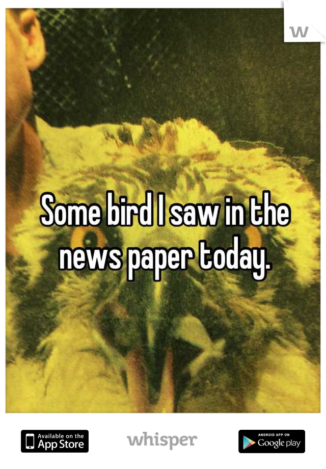 Some bird I saw in the news paper today.