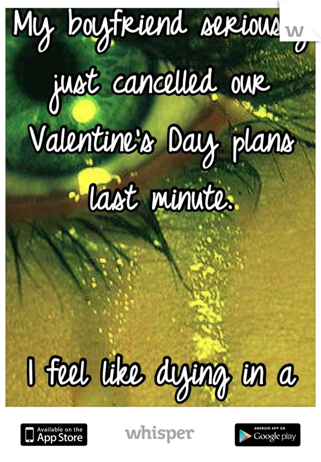 My boyfriend seriously just cancelled our Valentine's Day plans last minute.    I feel like dying in a hole </3