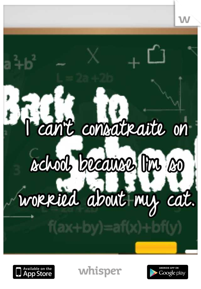 I can't consatraite on school because I'm so worried about my cat.