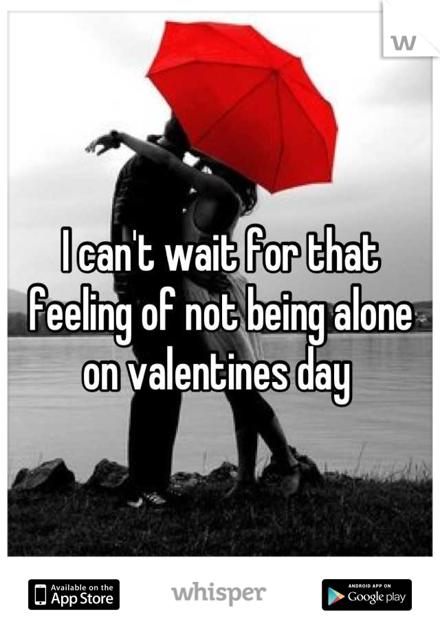 I can't wait for that feeling of not being alone on valentines day