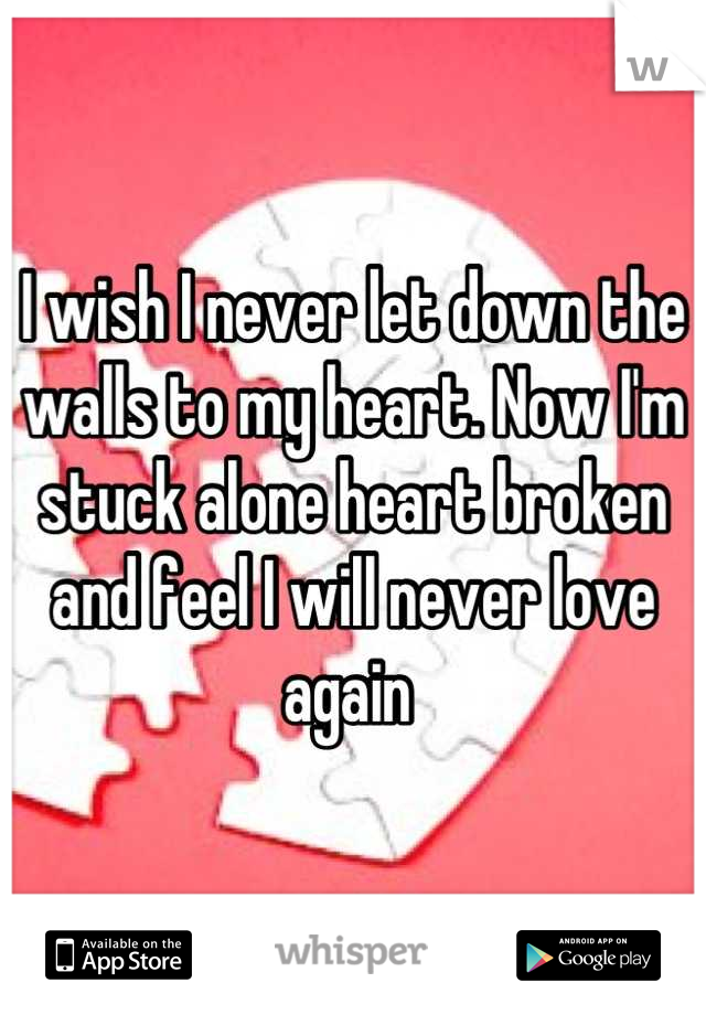 I wish I never let down the walls to my heart. Now I'm stuck alone heart broken and feel I will never love again