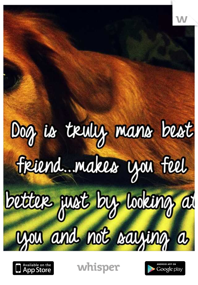 Dog is truly mans best friend...makes you feel better just by looking at you and not saying a word