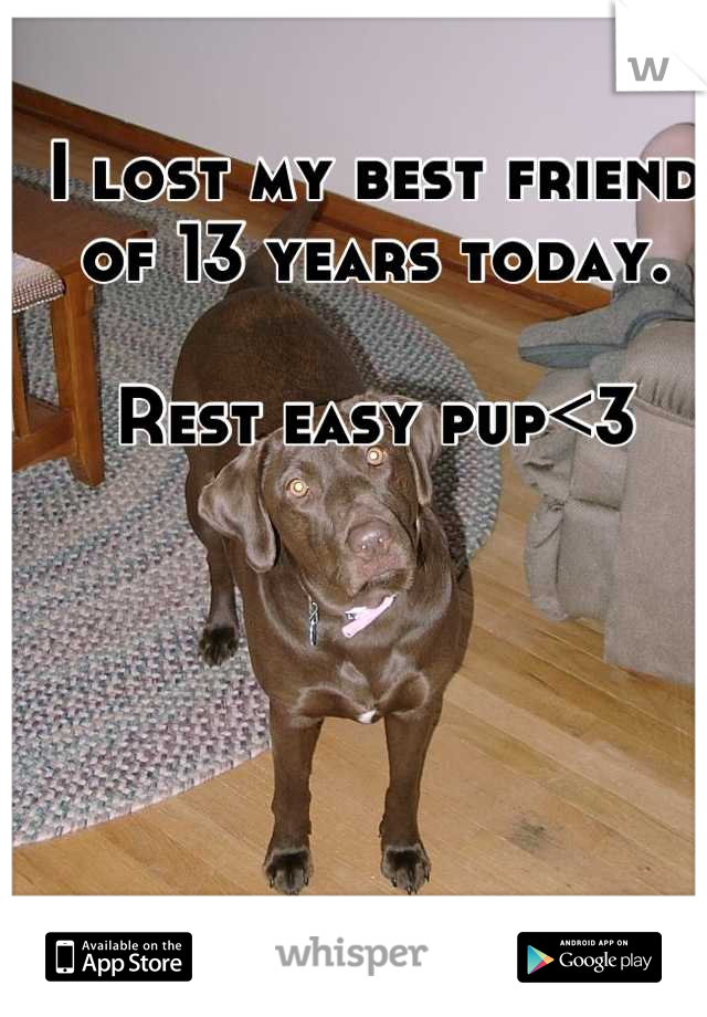 I lost my best friend of 13 years today.  Rest easy pup<3