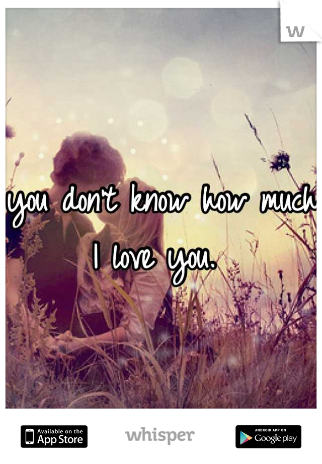 you don't know how much I love you.