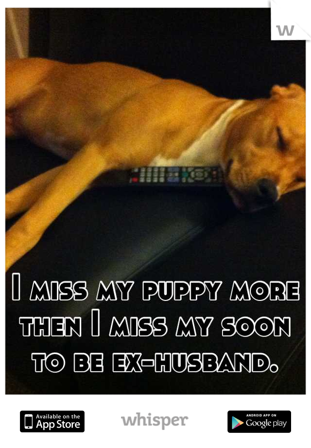 I miss my puppy more then I miss my soon to be ex-husband.