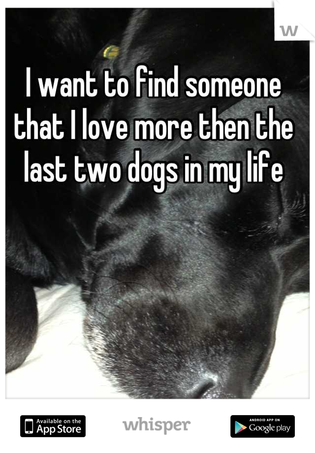 I want to find someone that I love more then the last two dogs in my life