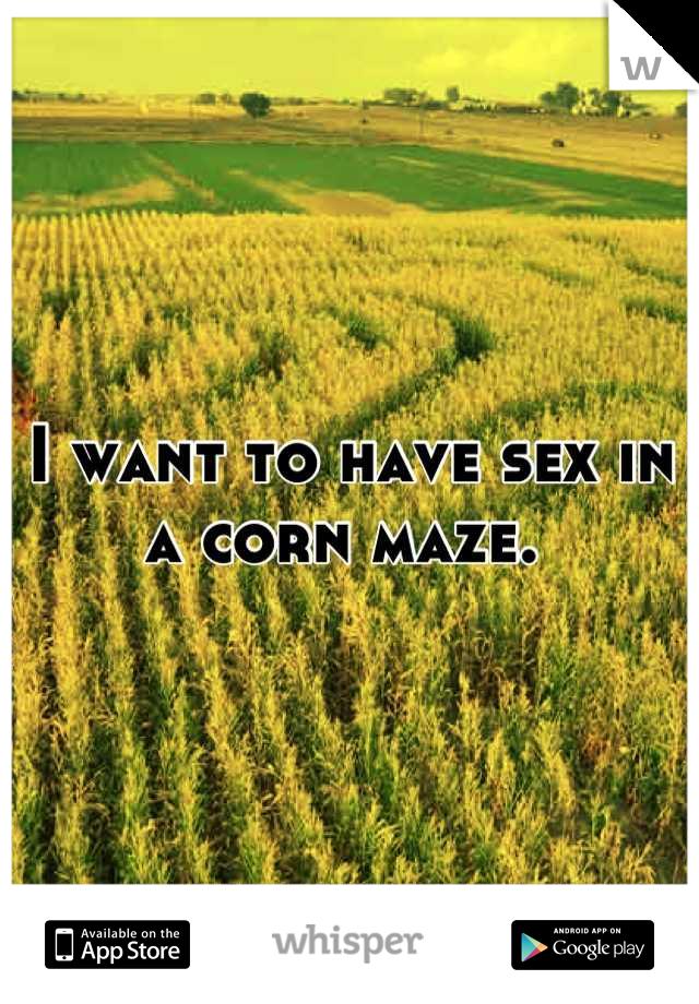 Couples having sex in corn field
