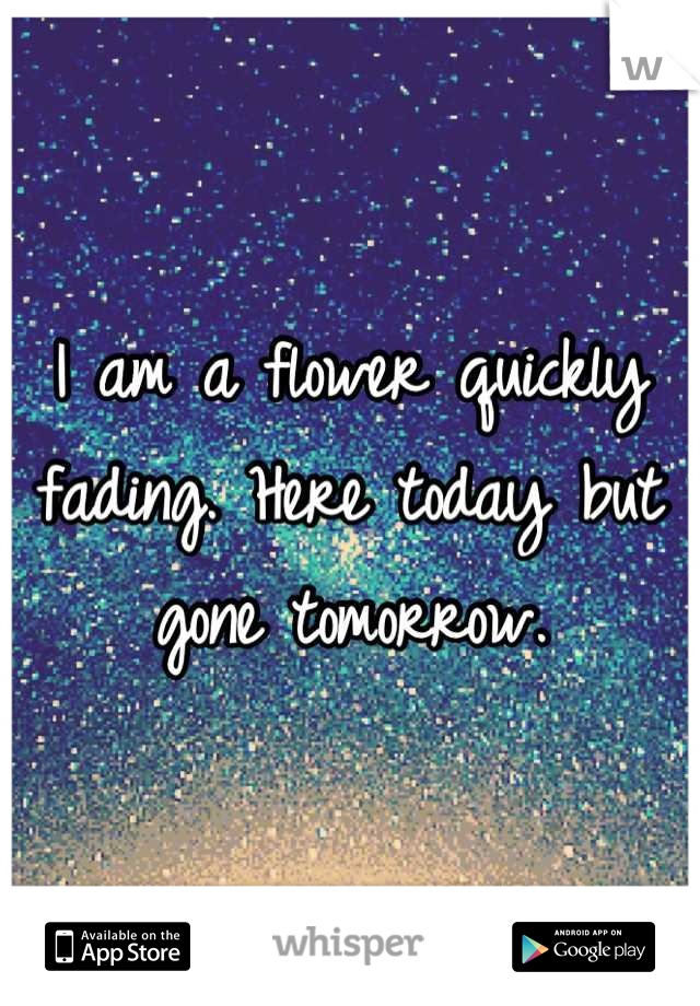 I am a flower quickly fading. Here today but gone tomorrow.