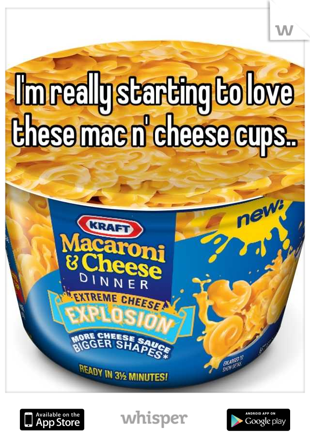 I'm really starting to love these mac n' cheese cups..