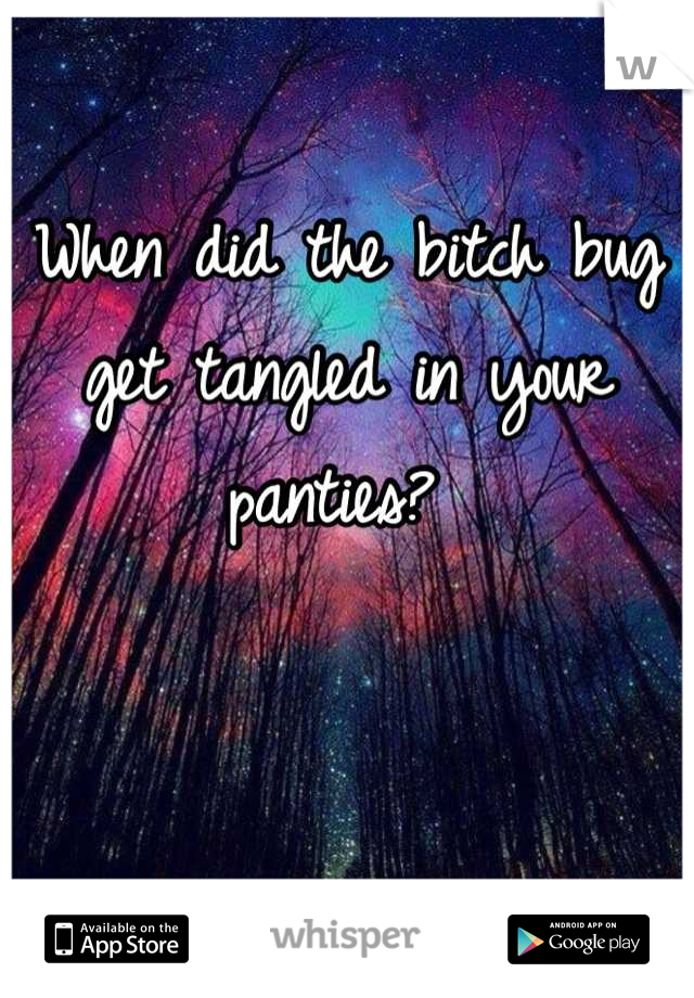 When did the bitch bug get tangled in your panties?