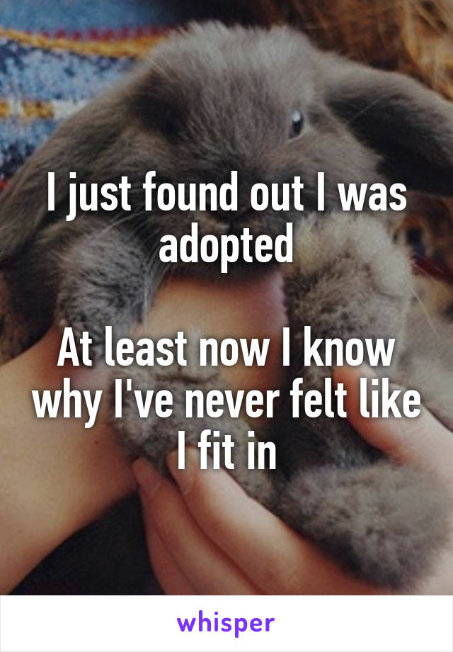 I just found out I was adopted  At least now I know why I've never felt like I fit in
