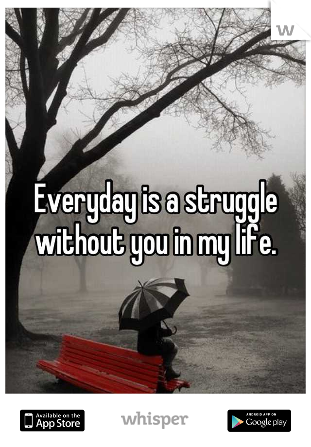 Everyday is a struggle without you in my life.