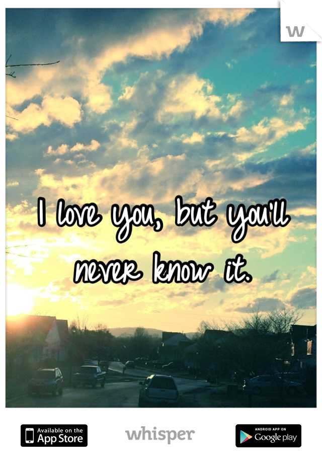 I love you, but you'll never know it.
