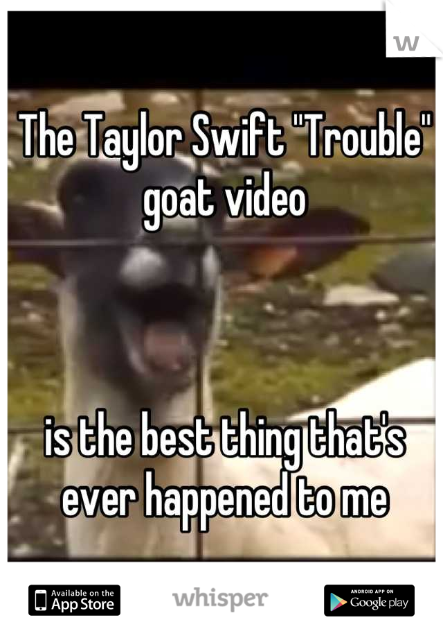 The Taylor Swift Trouble Goat Video Is The Best Thing That S Ever Happened To Me