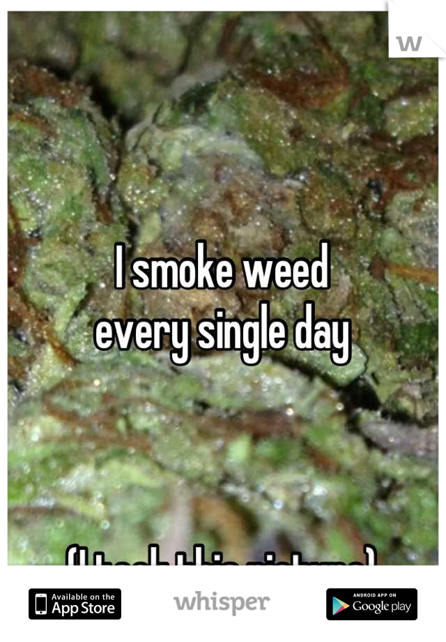 I smoke weed every single day    (I took this picture)