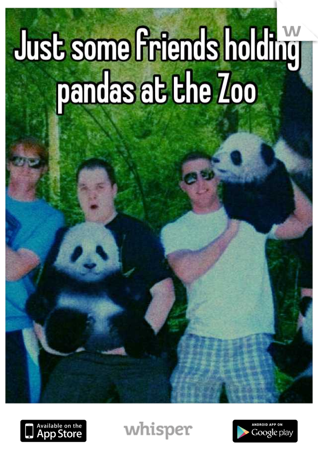 Just some friends holding pandas at the Zoo