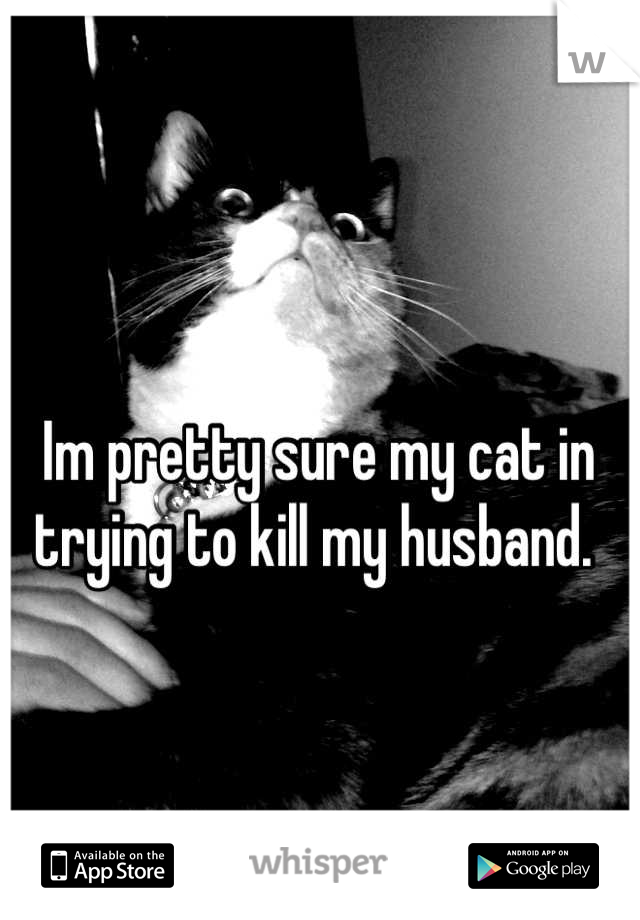 Im pretty sure my cat in trying to kill my husband.