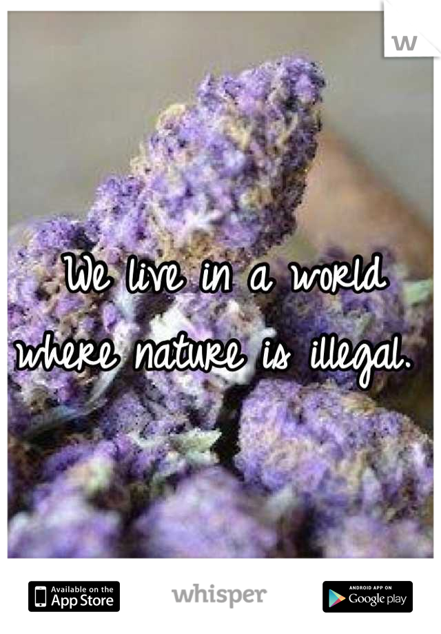 We live in a world where nature is illegal.