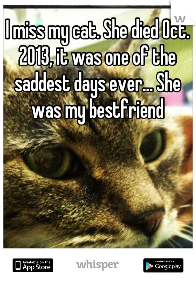I miss my cat. She died Oct. 2013, it was one of the saddest days ever... She was my bestfriend
