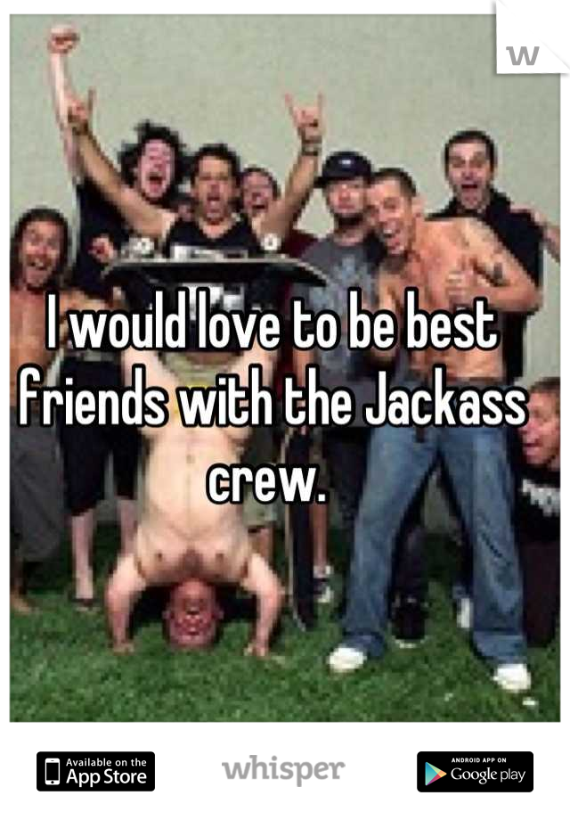 I would love to be best friends with the Jackass crew.