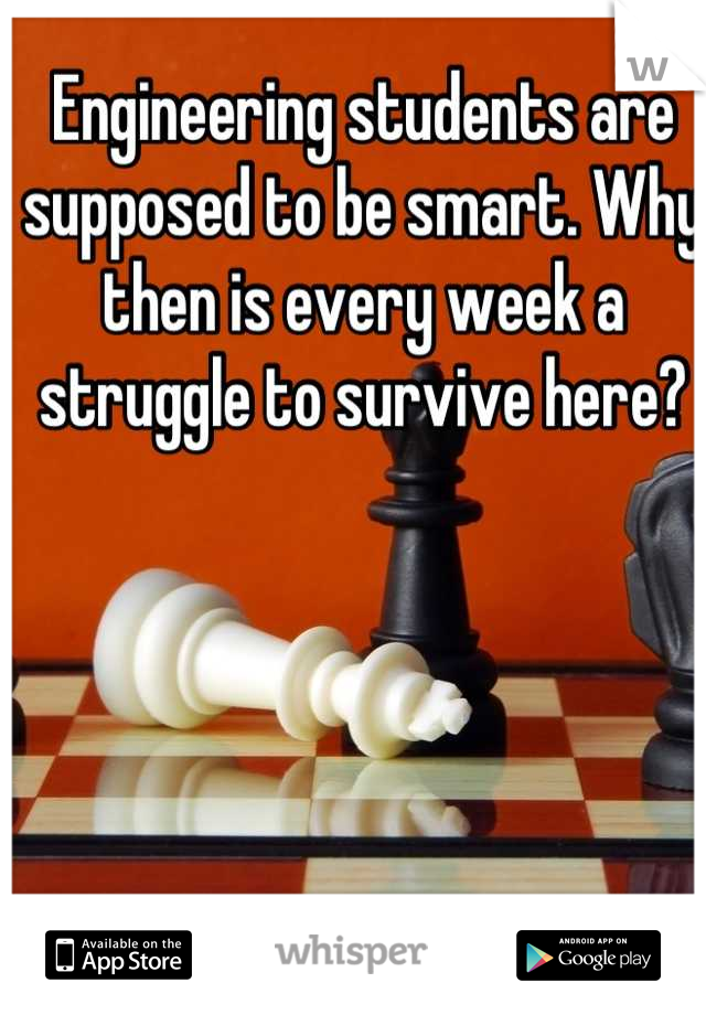 Engineering students are supposed to be smart. Why then is every week a struggle to survive here?