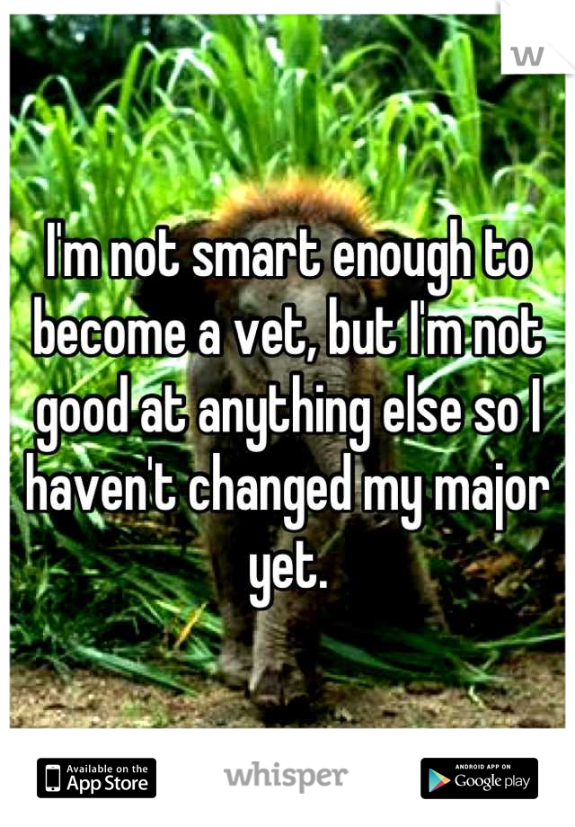 I'm not smart enough to become a vet, but I'm not good at anything else so I haven't changed my major yet.
