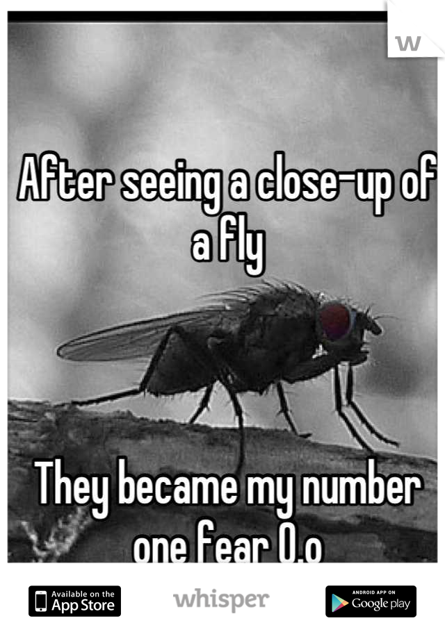 After seeing a close-up of a fly     They became my number one fear O.o
