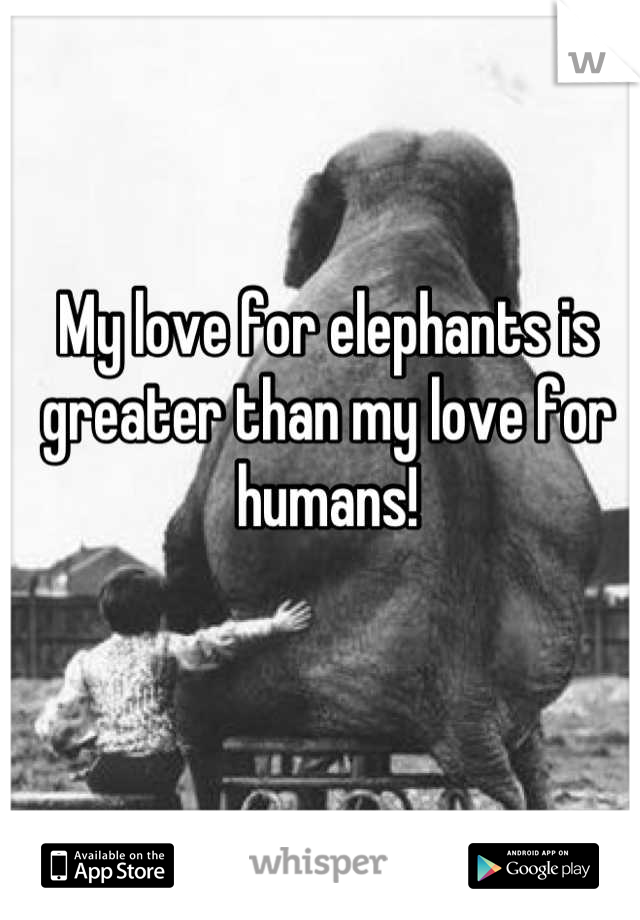 My love for elephants is greater than my love for humans!