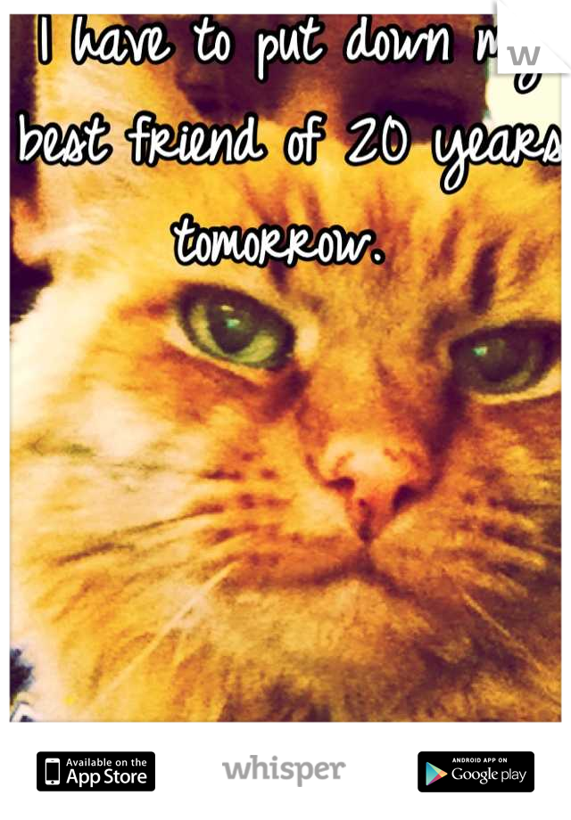 I have to put down my best friend of 20 years tomorrow.