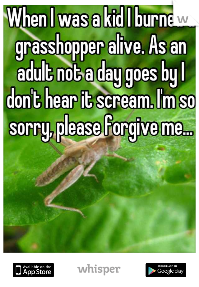 When I was a kid I burned a grasshopper alive. As an adult not a day goes by I don't hear it scream. I'm so sorry, please forgive me...