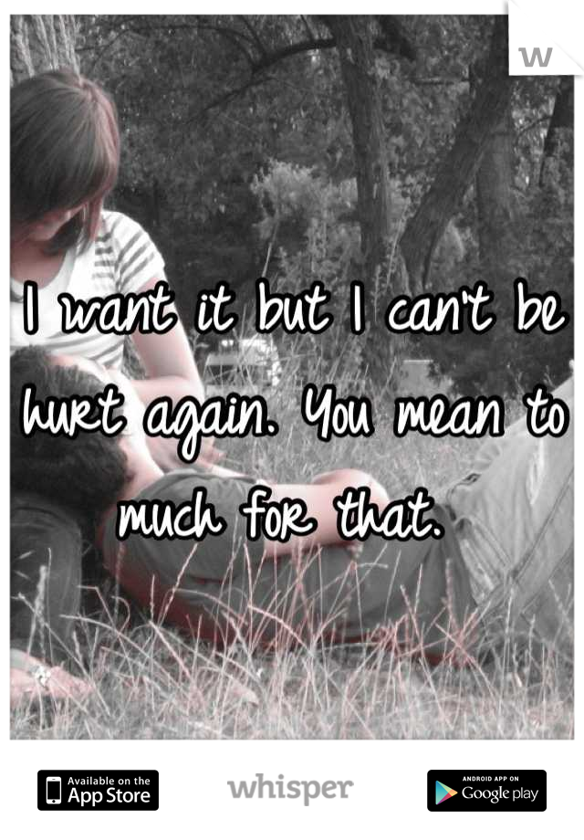 I want it but I can't be hurt again. You mean to much for that.