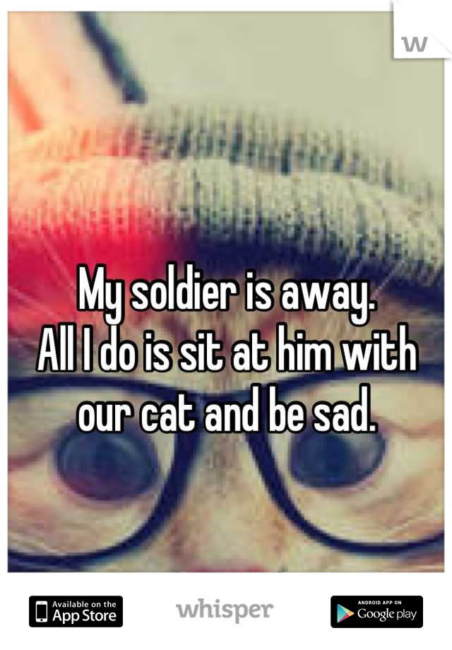 My soldier is away.  All I do is sit at him with  our cat and be sad.