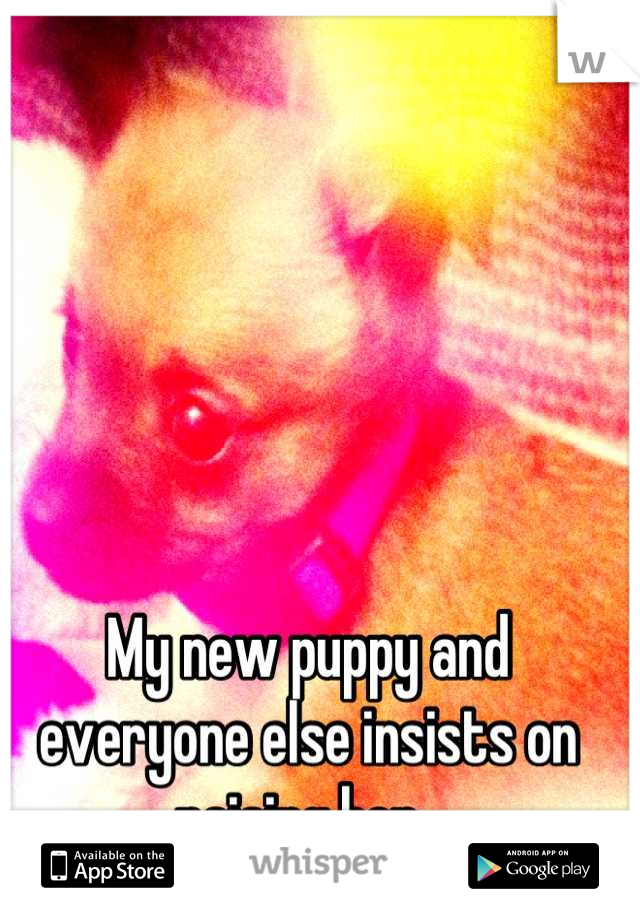 My new puppy and everyone else insists on raising her.