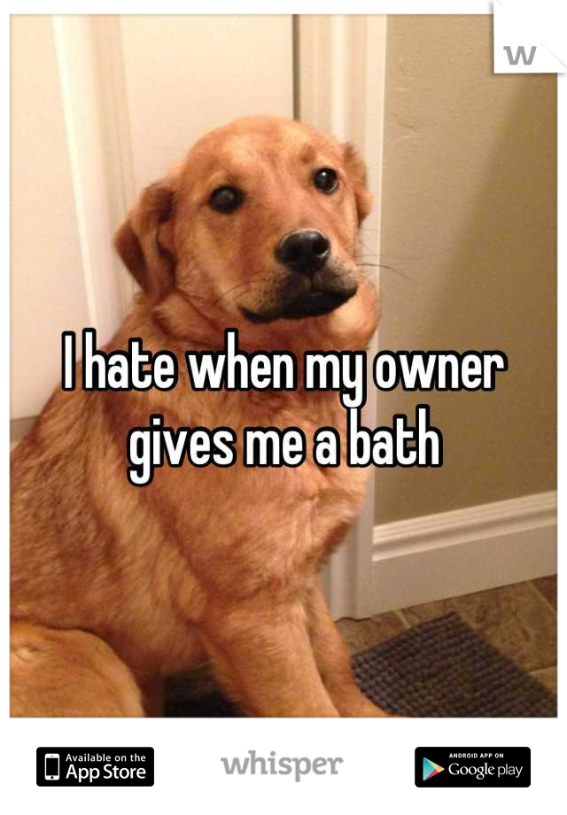I hate when my owner gives me a bath