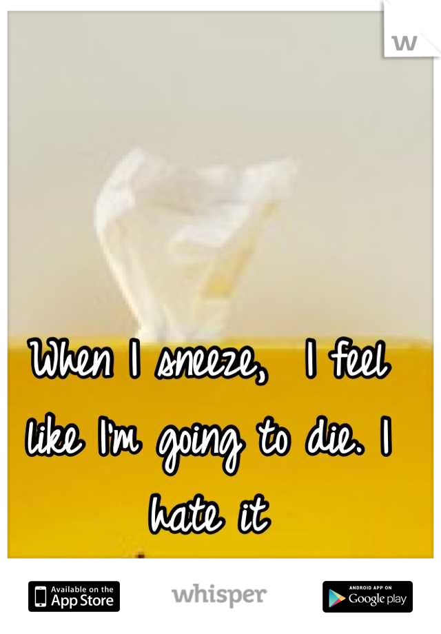 When I sneeze,  I feel like I'm going to die. I hate it