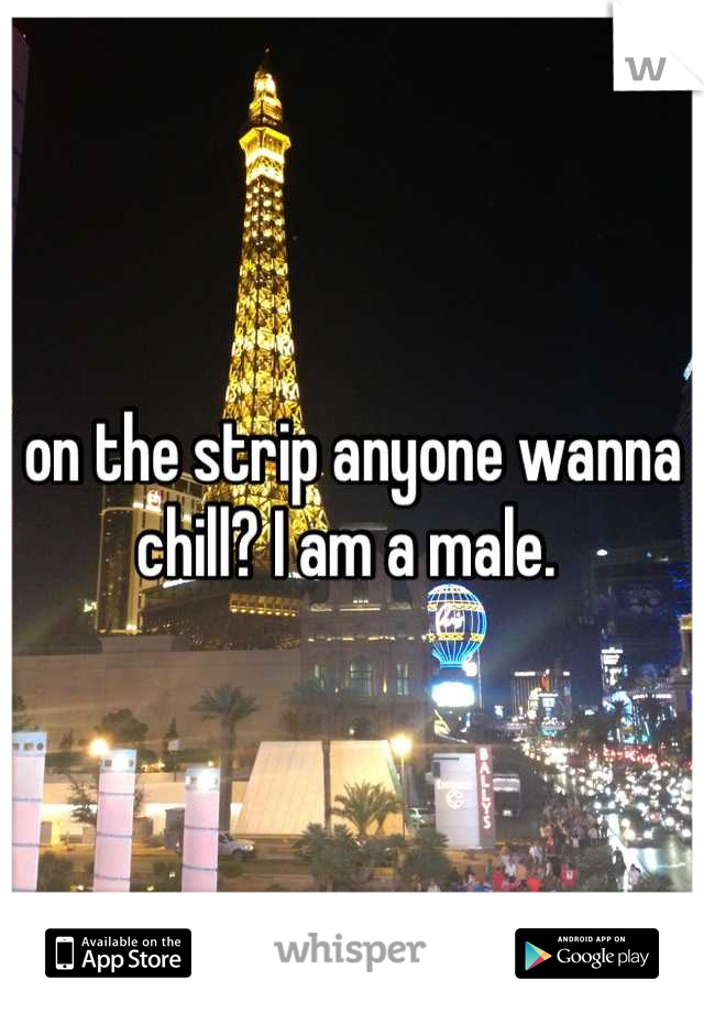 on the strip anyone wanna chill? I am a male.
