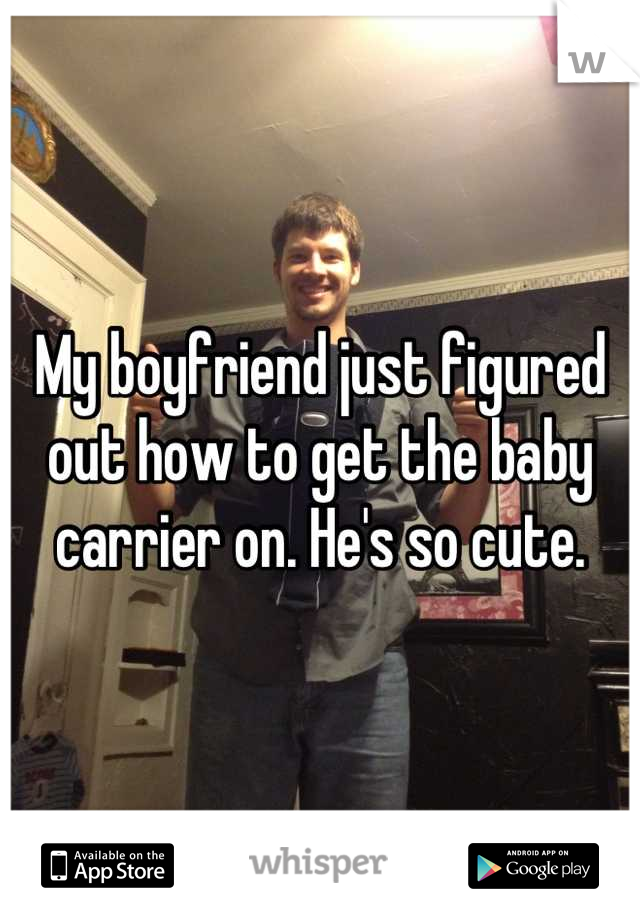 My boyfriend just figured out how to get the baby carrier on. He's so cute.