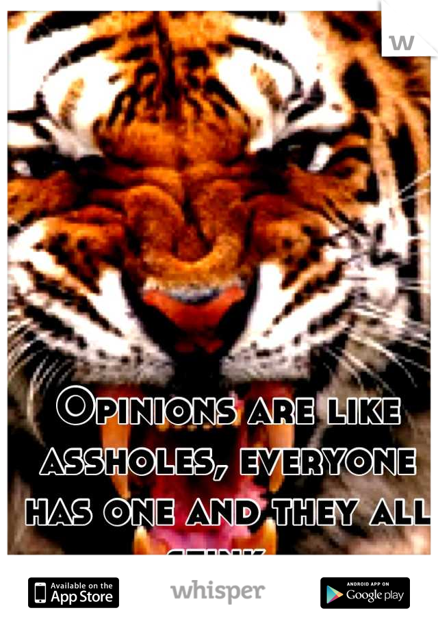 Opinions are like assholes, everyone has one and they all stink.