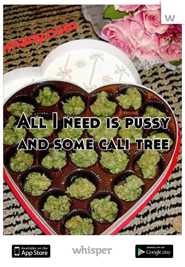 All I need is pussy and some cali tree