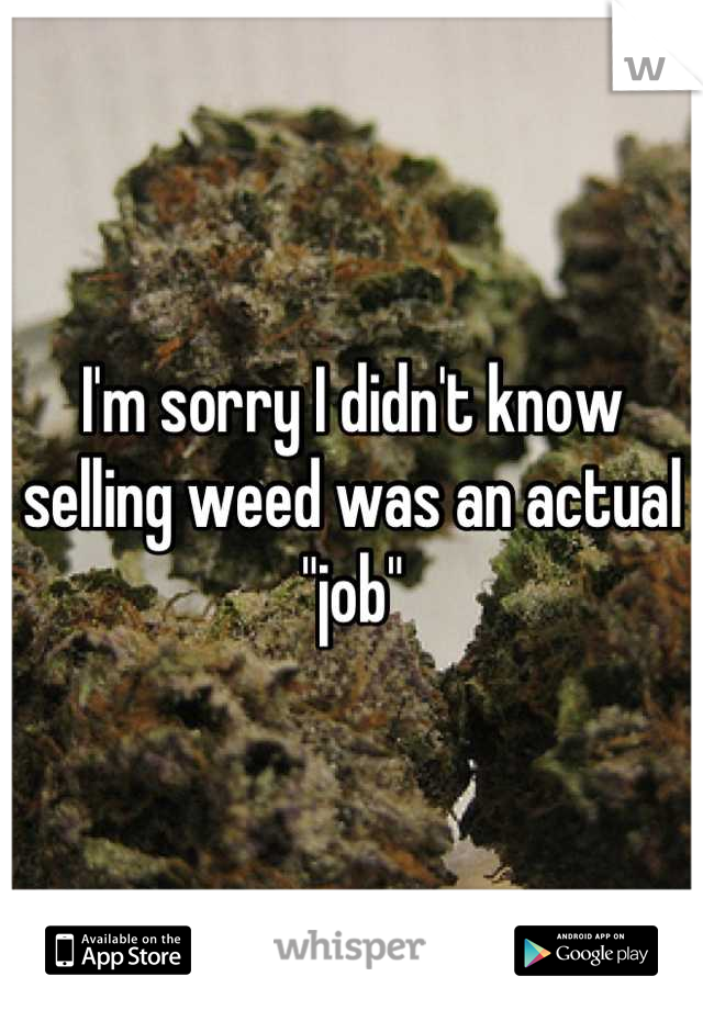 "I'm sorry I didn't know selling weed was an actual ""job"""