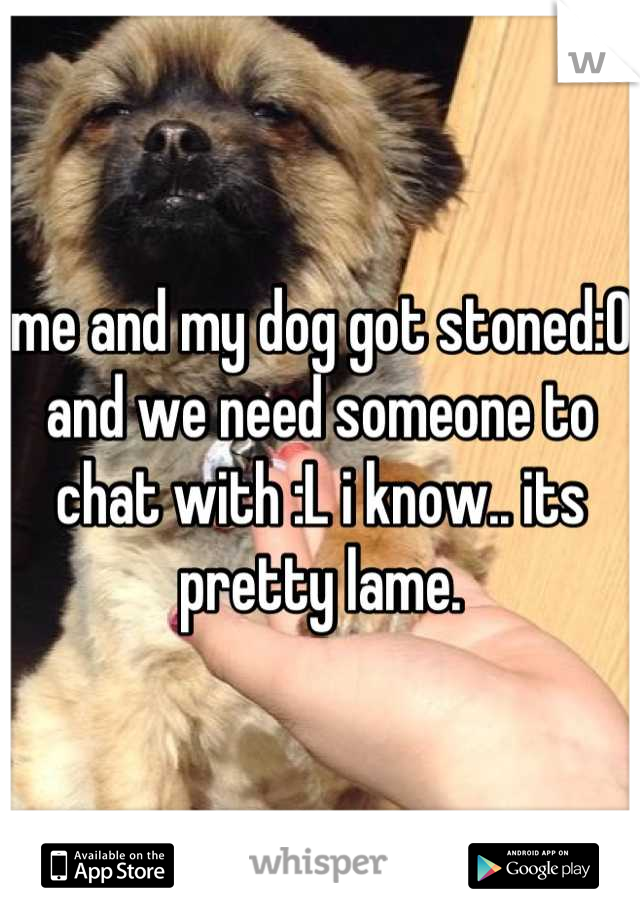me and my dog got stoned:0 and we need someone to chat with :L i know.. its pretty lame.