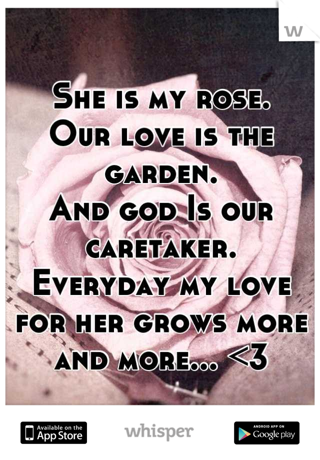She is my rose.                                        Our love is the garden.                           And god Is our caretaker.              Everyday my love for her grows more and more... <3