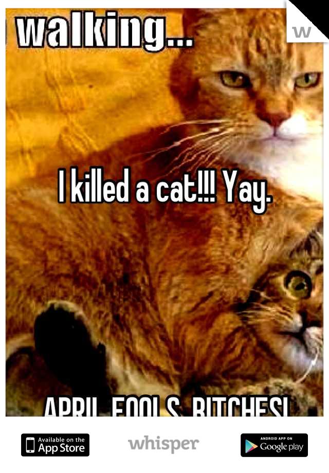 I killed a cat!!! Yay.     APRIL FOOLS, BITCHES!
