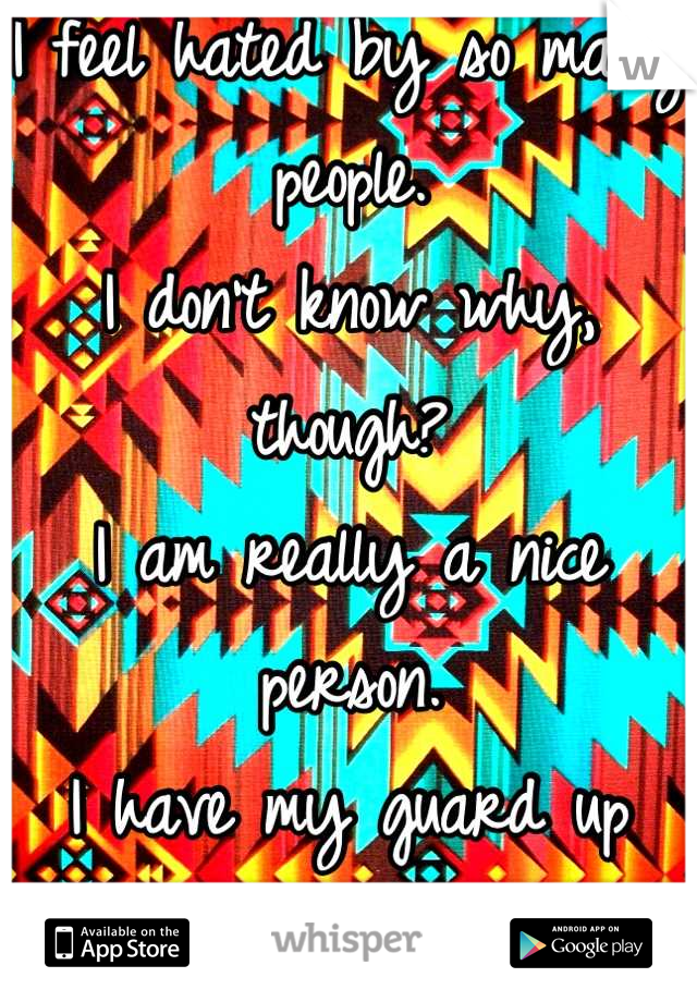I feel hated by so many people. I don't know why, though? I am really a nice person. I have my guard up because of my past.