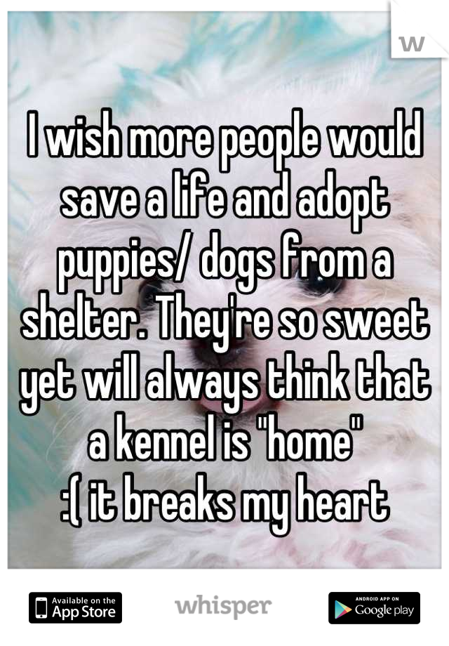 "I wish more people would save a life and adopt puppies/ dogs from a shelter. They're so sweet yet will always think that a kennel is ""home""   :( it breaks my heart"