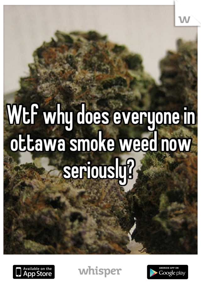 Wtf why does everyone in ottawa smoke weed now seriously?