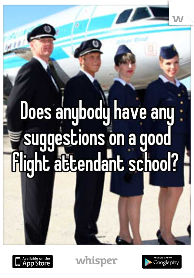 Does anybody have any suggestions on a good flight attendant school?