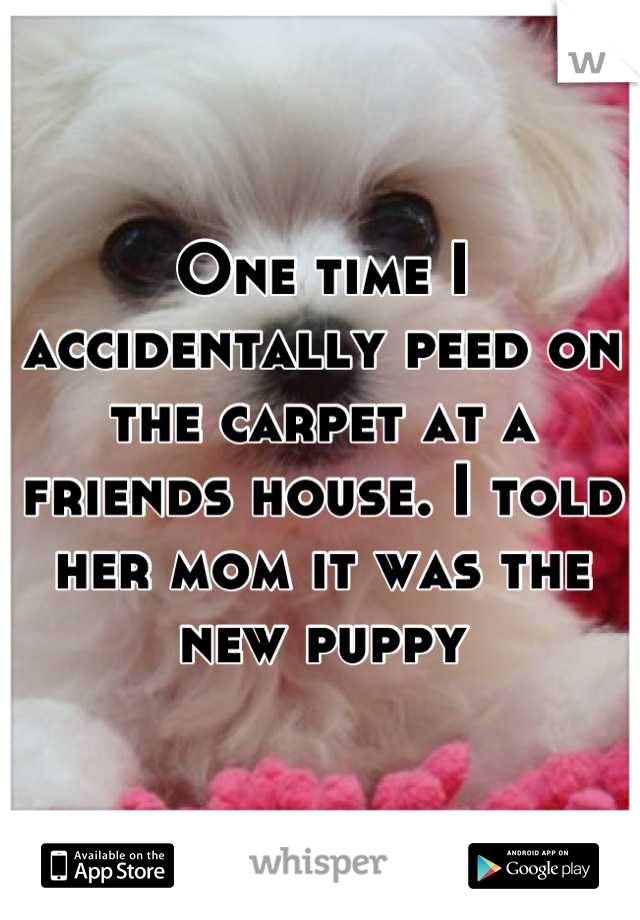 One time I accidentally peed on the carpet at a friends house. I told her mom it was the new puppy